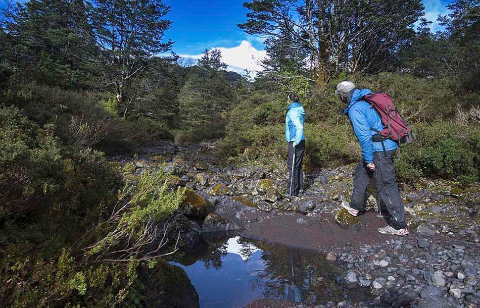 Hiking melimoyu lodge